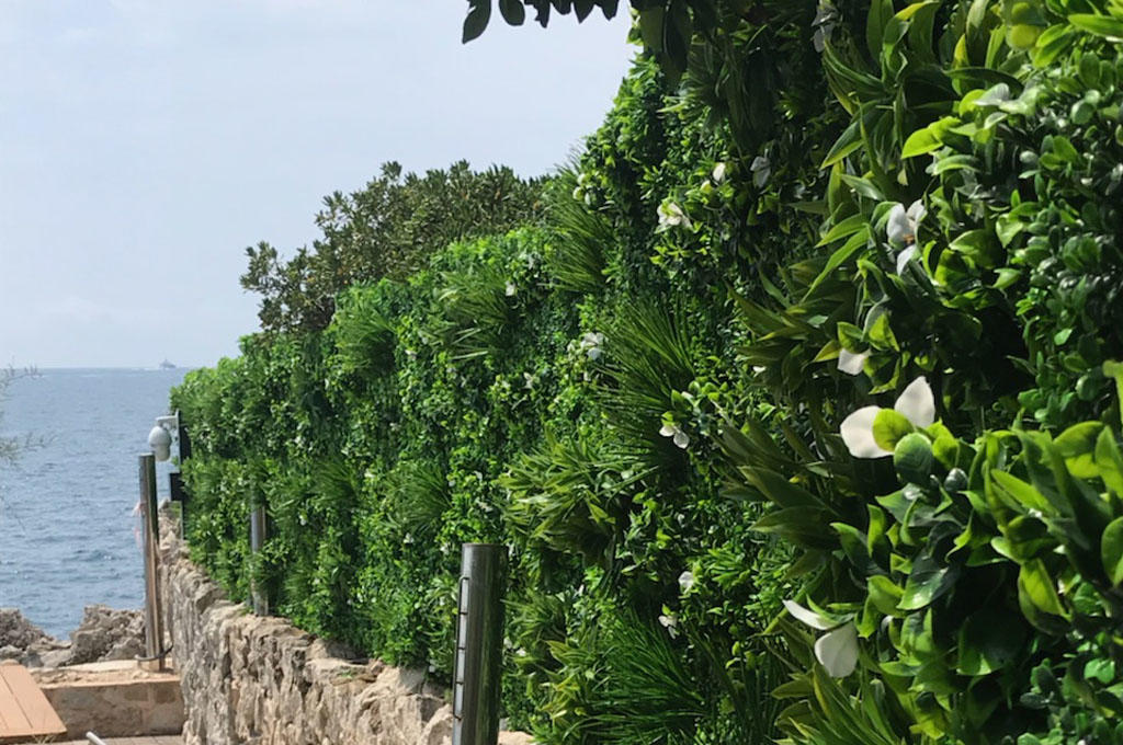 mur végétal imitation liseron